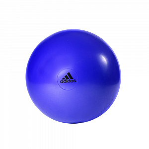 Gymball - 65cm Flash Purple