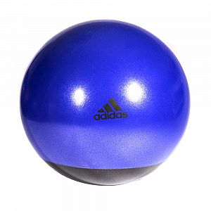Stability Gymball - 65cm Flash Purple