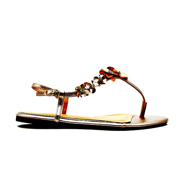 Ladies Floral Exclusive Sandals Shoes - Champane