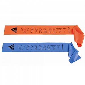 Training Bands (Set of 2)