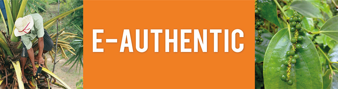 E-Authentic Shop Banner